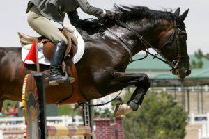 Olympia, Concours Complet, Springreiten